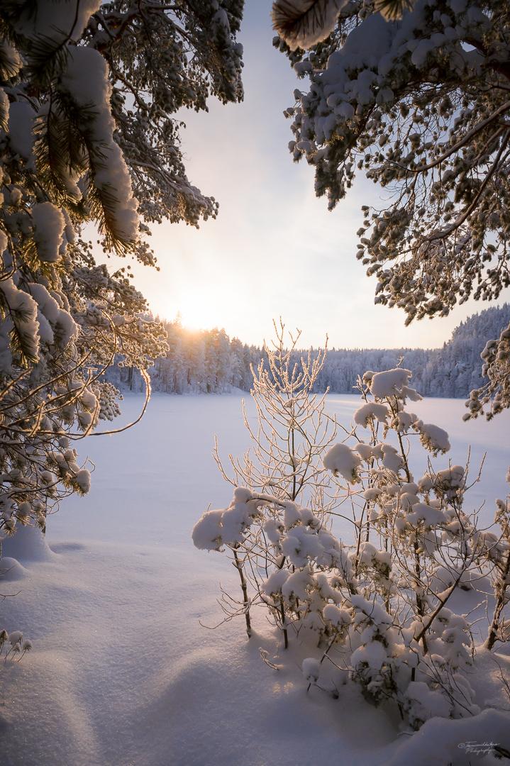 Southern Konnevesi National Park-2.jpg