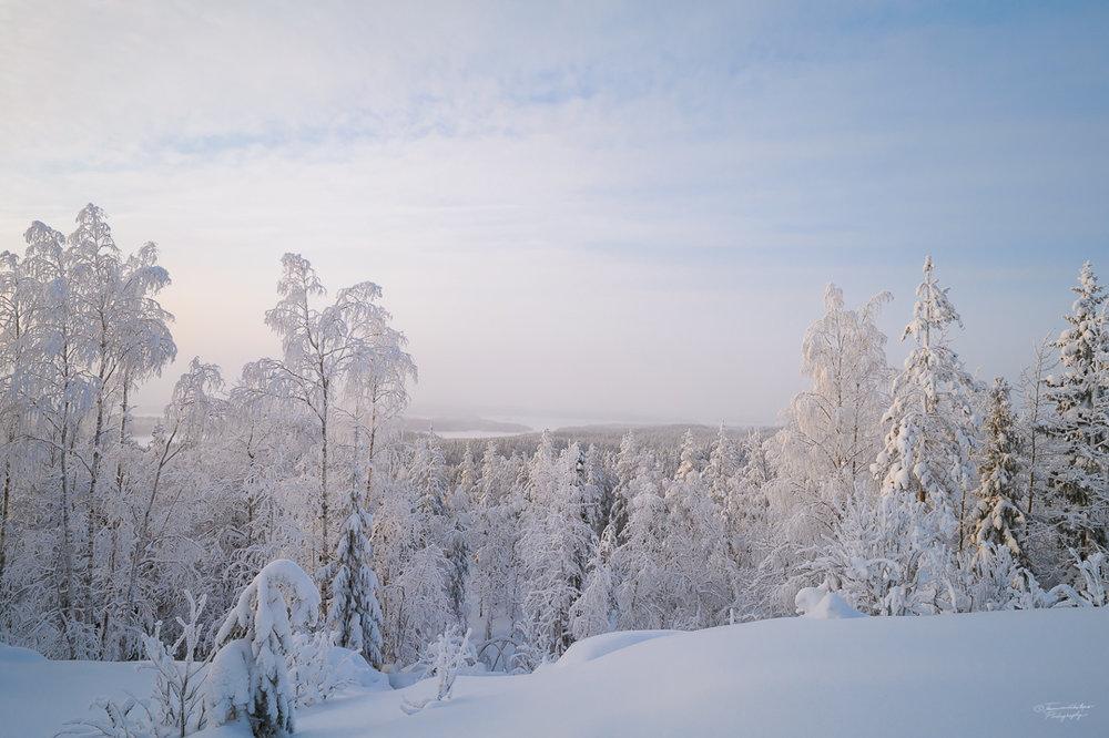 Southern Konnevesi National Park-17.jpg