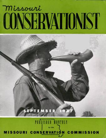 conservationist.jpeg