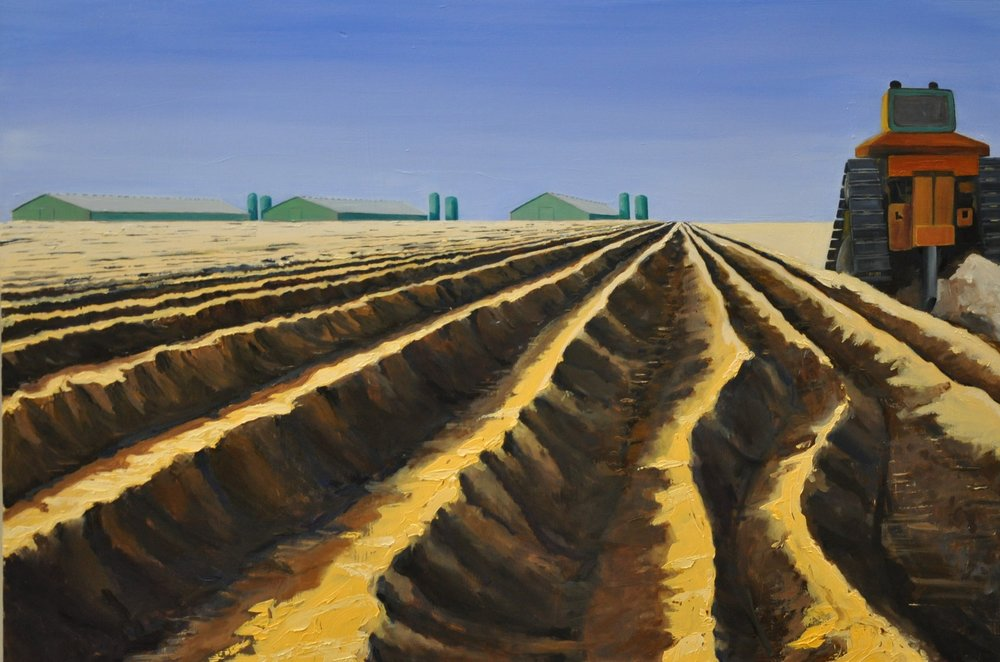 Ripping For Almonds  2017-2018 $950  24 in x 36 in  Oil on panel  I live in a place of amazing, beautiful, brutal works of labor in Agriculture - human and machine shaping the land. Literally unearthing the treasure locked below with a seven foot long ripping blade. The furrows I stood in were hip high, the loose dirt trembling and slipping down around my ankles. As the Cat rumbled away on its slow crawl, it took the earthquake with it. Soon the saplings will be planted and they'll thrive - given such a fertile beginning.