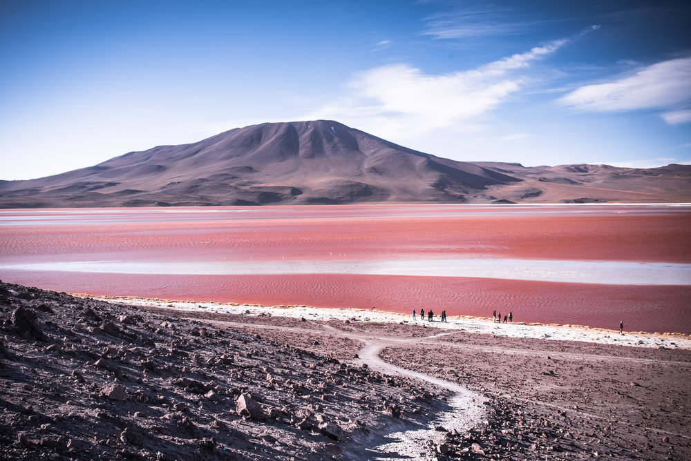 Laguna Colorada Salar de Uyuni, Bolivia