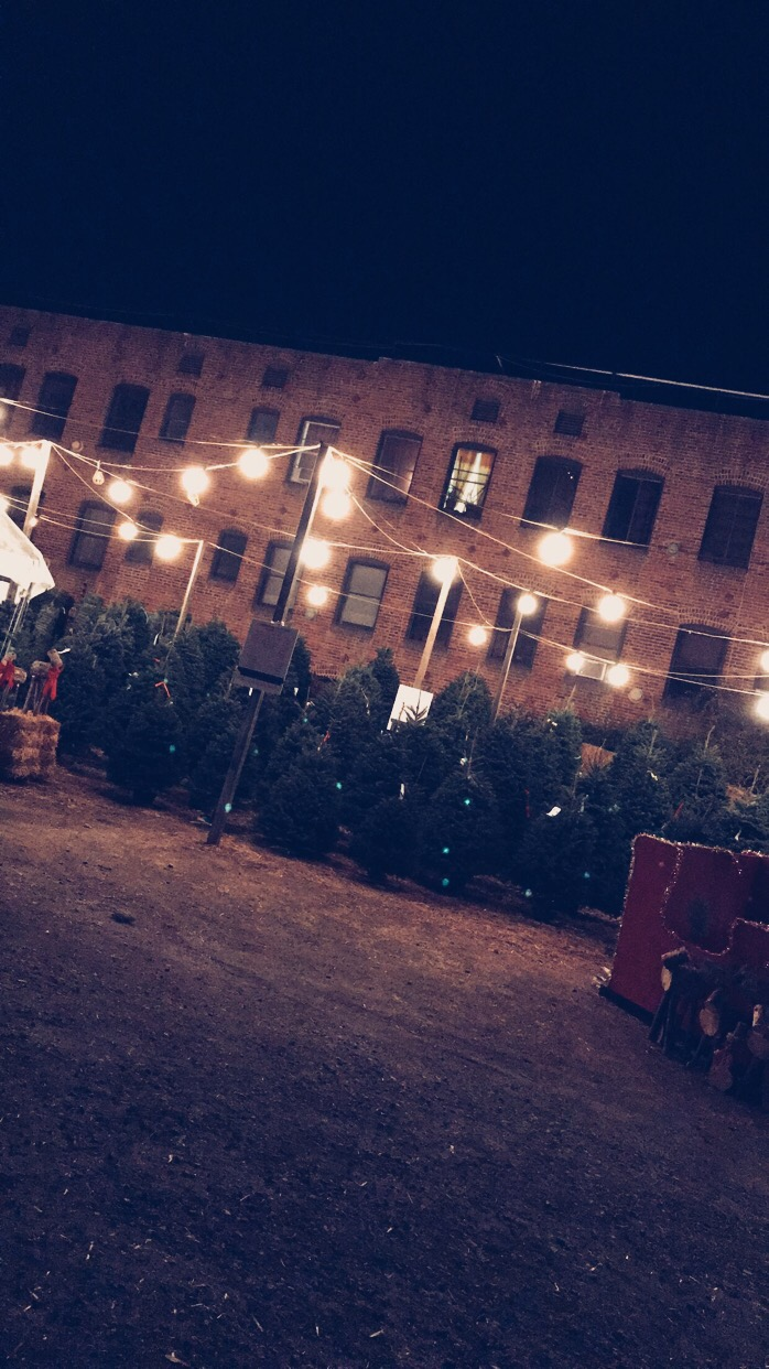 larchmont village christmas tree lot
