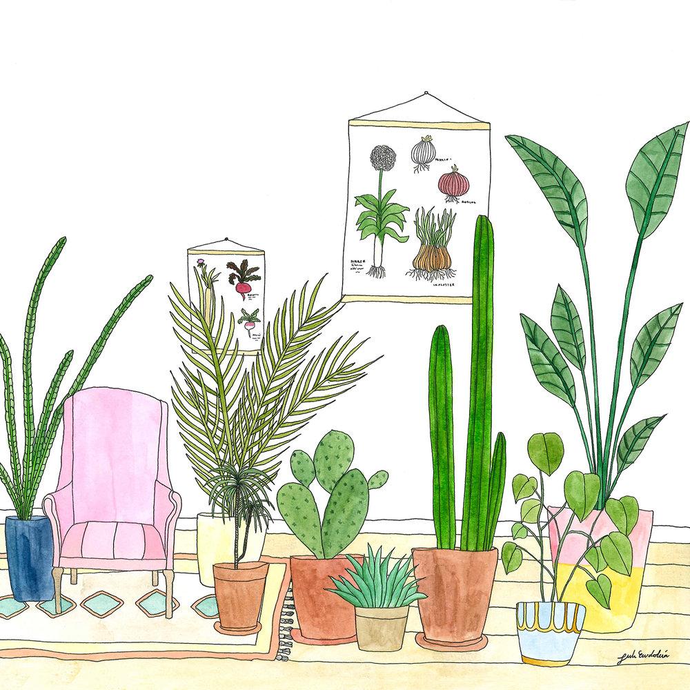 plantemylder.jpg