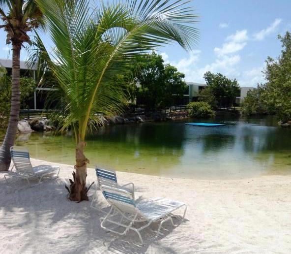 sandy beach pool.jpg