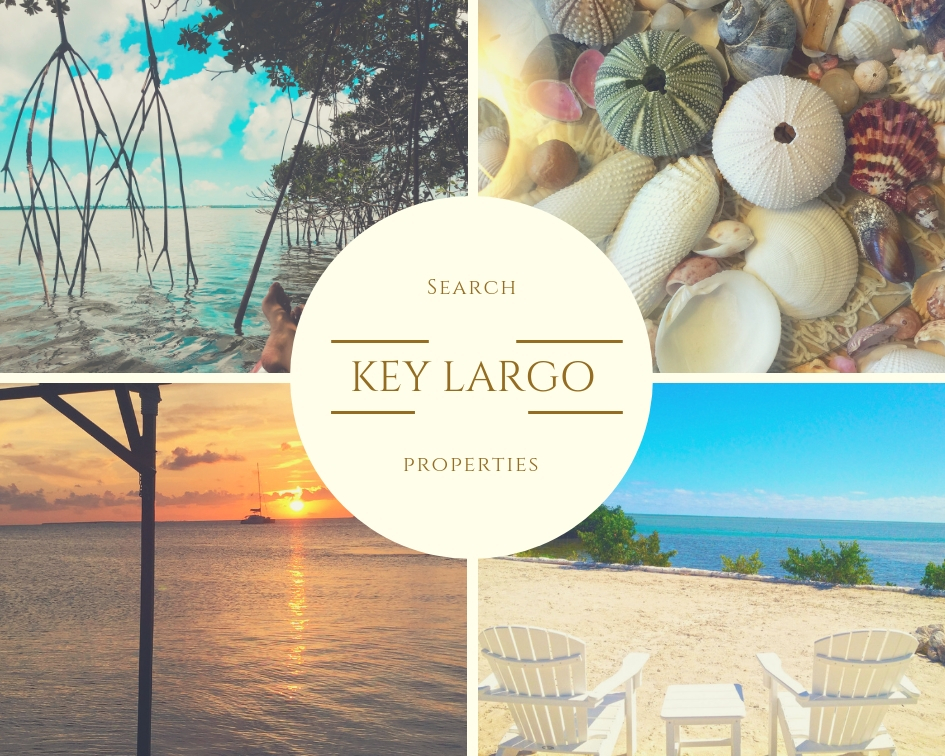 Key Largo   Click the following link or the picture above to preview properties currently listed for sale in the Key Largo area (33037 Zip Code)    CLICK HERE