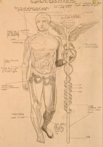 An external representation of the ancient caduceus