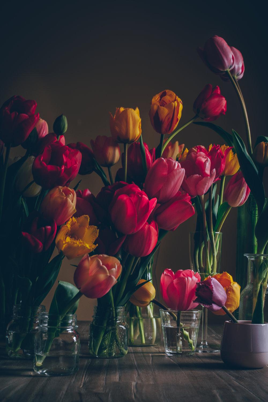Tulipes et ce printemps tant attendu…