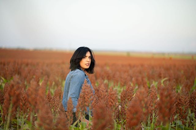 Sorghum fields at golden hour.  Model @esteffany.duran