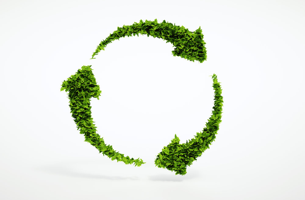 Sustainable Supply Chains and their Advantages