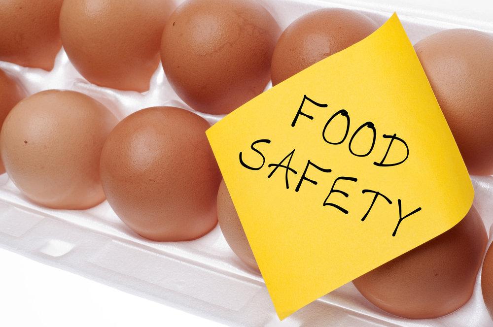 Food Logistics: A Focus on Safety