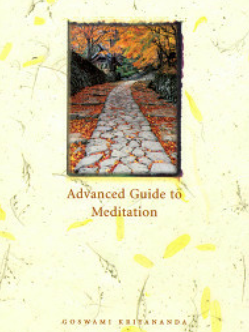 Advanced Guide to Meditation (Hardcover) - $22.95