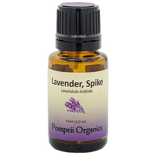 Lavender, Spike - $15.45