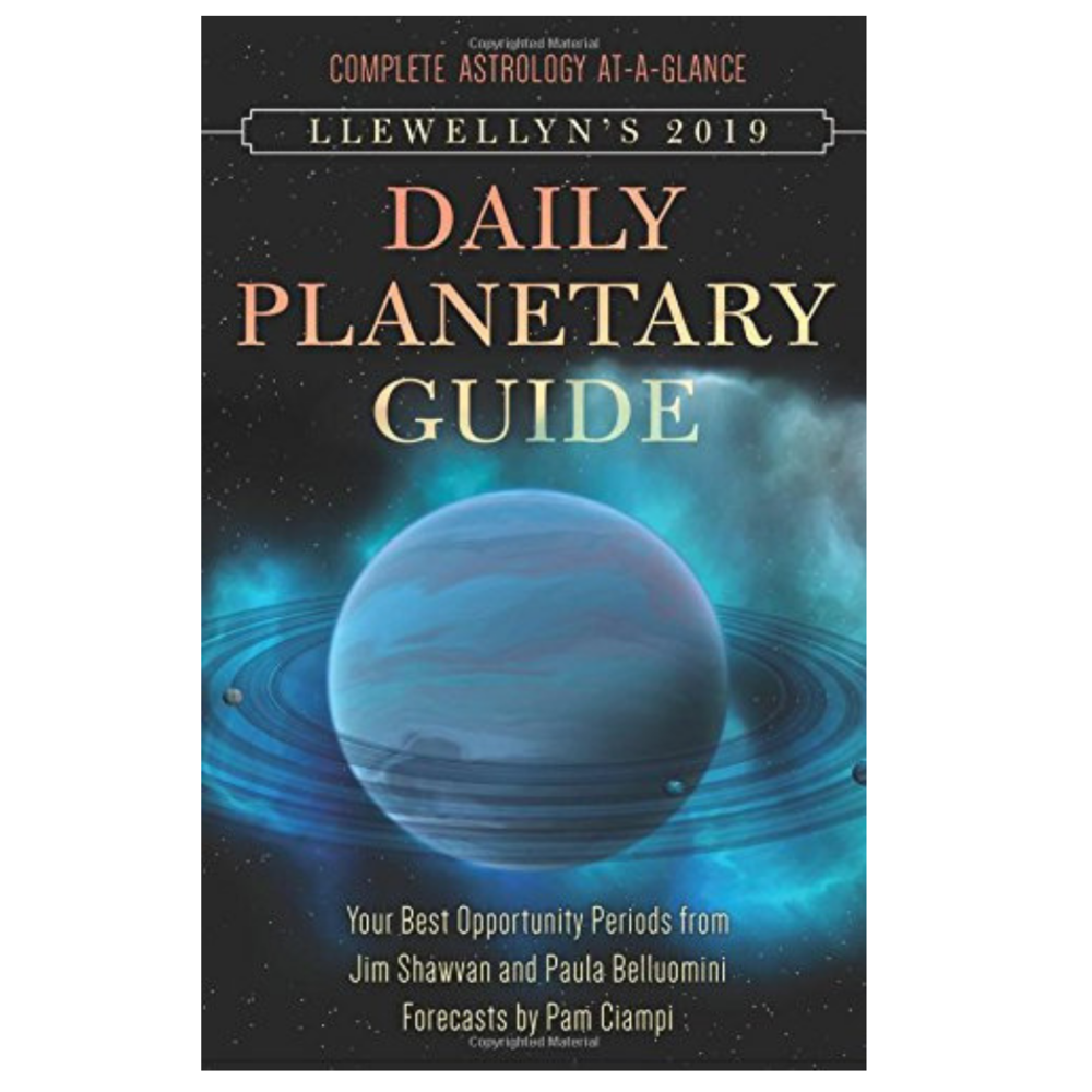Llewellyn's 2019 Daily Planetary Guide - $20.95