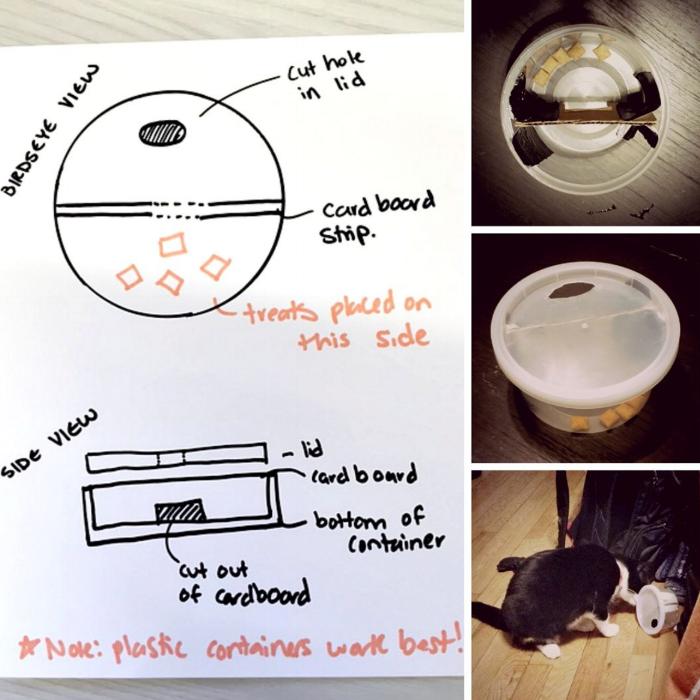 cat-food-puzzle