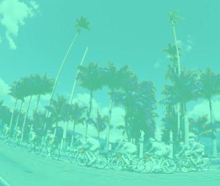 turquoisebikes.jpg