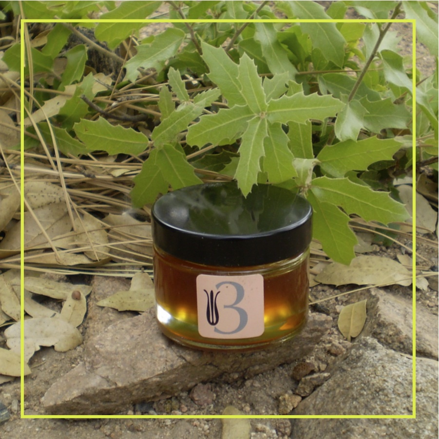 3. Nectar Honey Mask   Prescott Wildflower Honey