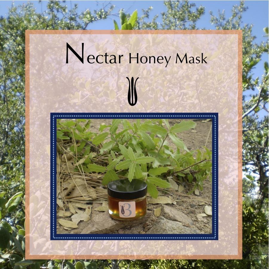 3. Nectar Honey Mask   Prescott Wildflower Honey