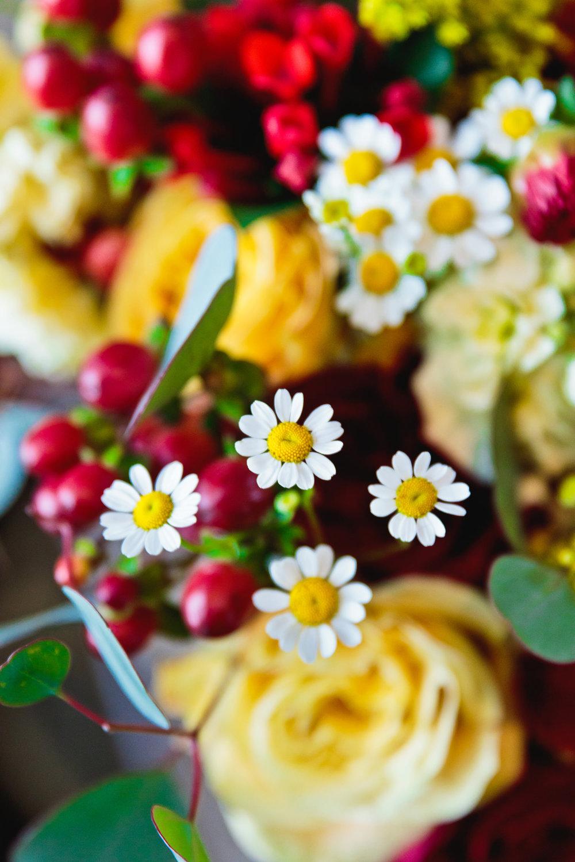 denver-botanic-gardens-chatfield-farms-wedding-tomKphoto-056.jpg