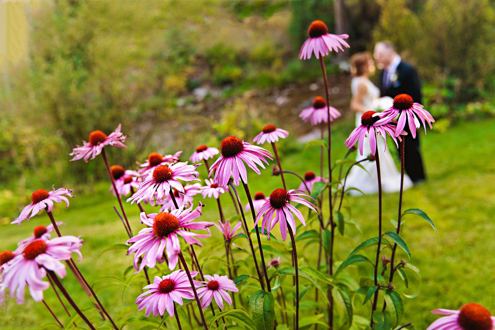 sonnenalp-vail-wedding-tomKphoto-001.jpg