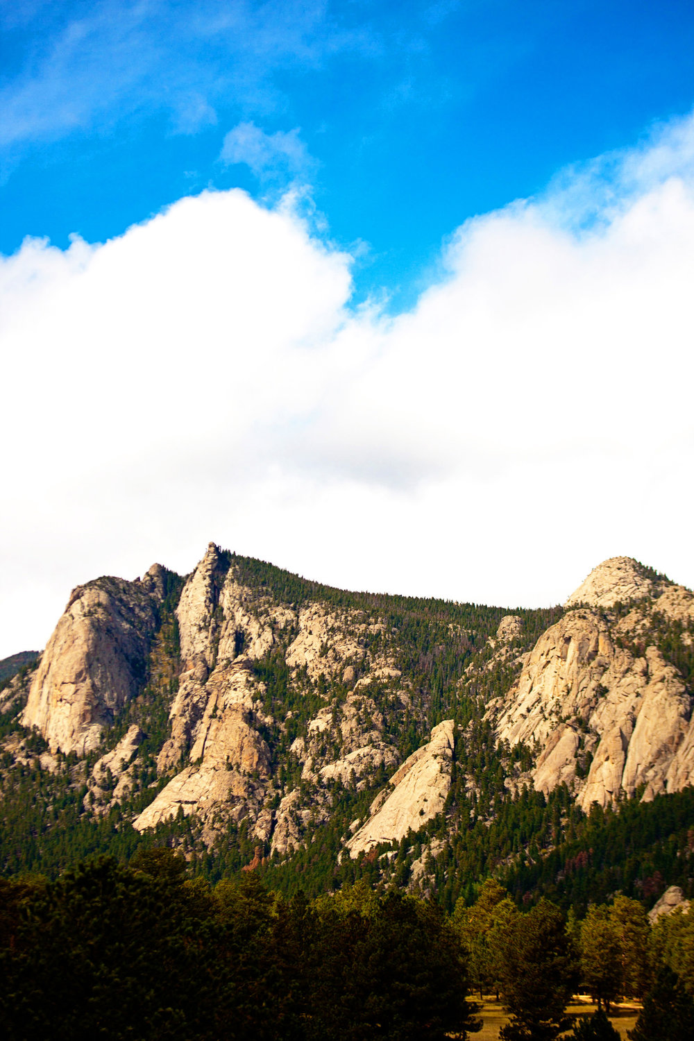 black-canyon-inn-wedding-estes-park-tomKphoto-090.jpg