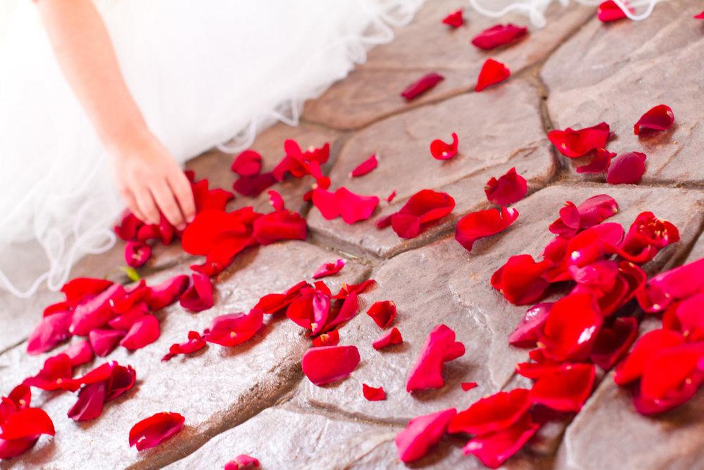 black-canyon-inn-wedding-estes-park-tomKphoto-101.jpg