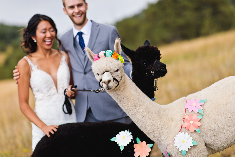 mount-vernon-canyon-club-wedding-tomKphoto-008.jpg