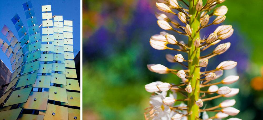 denver-botanic-gardens-wedding-tomKphoto-030.jpg