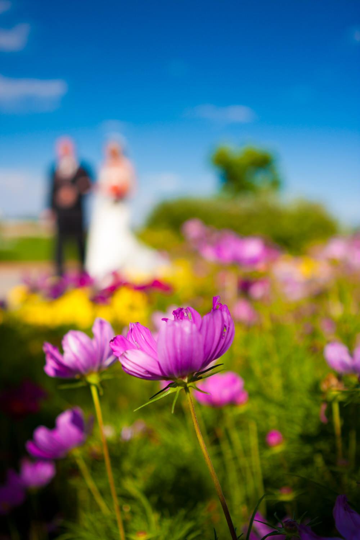 fort-collins-wedding-photographer-tomKphoto-025.jpg