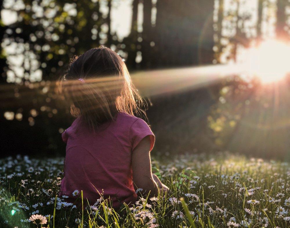 Get plenty Sunlight -