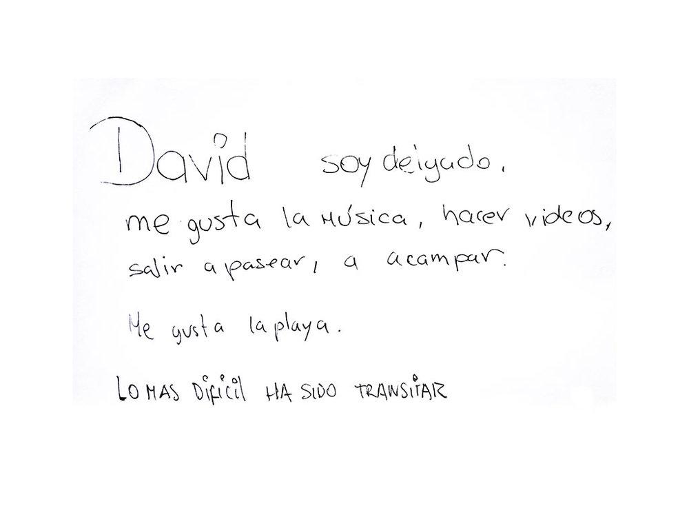 David1.jpg