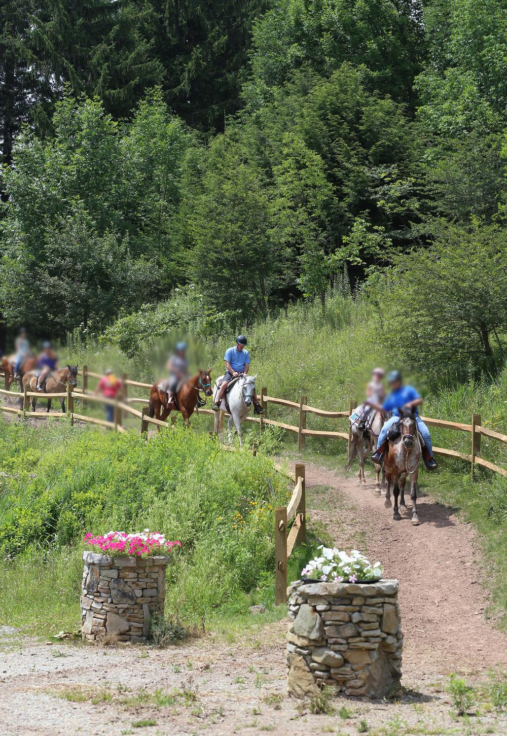 <strong>Horseback Riding</strong>