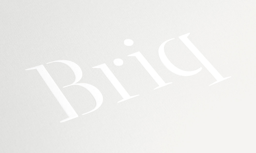 Briq by Project Friday  promotional brochure and development branding.  view case study