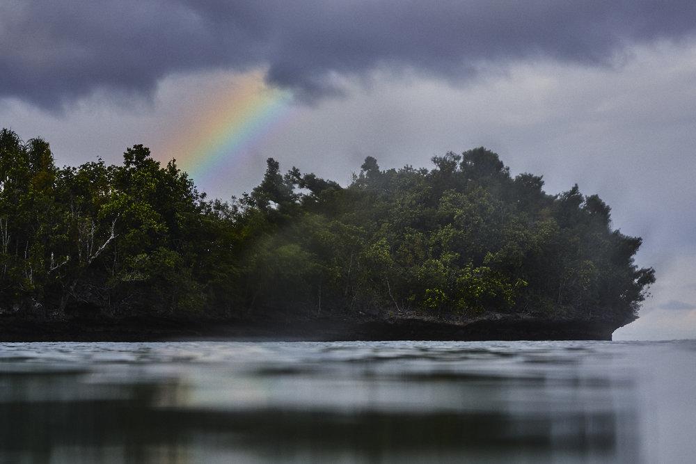 Raj Ampat_West Papua_Scott Mac Donough_0746.jpg