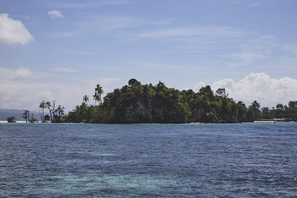 Raj Ampat_West Papua_Scott Mac Donough_0641.jpg