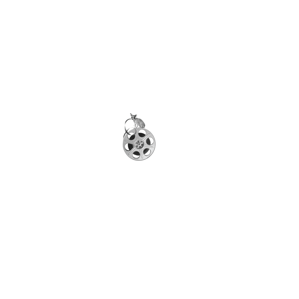 LA_Shorts_laurels_small.png