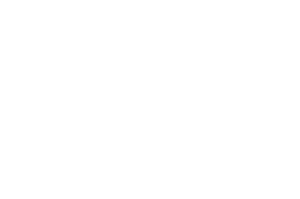 OFFICIALSELECTION-SeattleAsianAmericanFilmFestival-2019.png