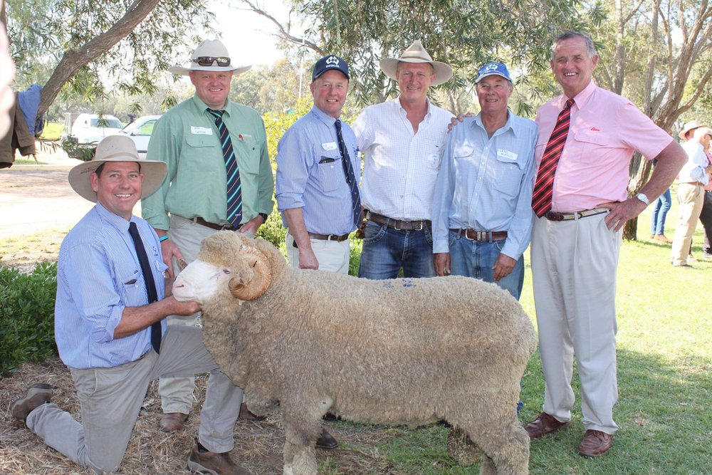 "Pictured here: Andy Maclean, John Suttree (Landmark), George Falkiner (HR Principal) Top Buyer James Morris ""Bonanza"" Walgett, Stud Master Forbes Murdoch, and Auctioneer Andy McGeoch with the Top Priced Merino Ram sold for $11,000"