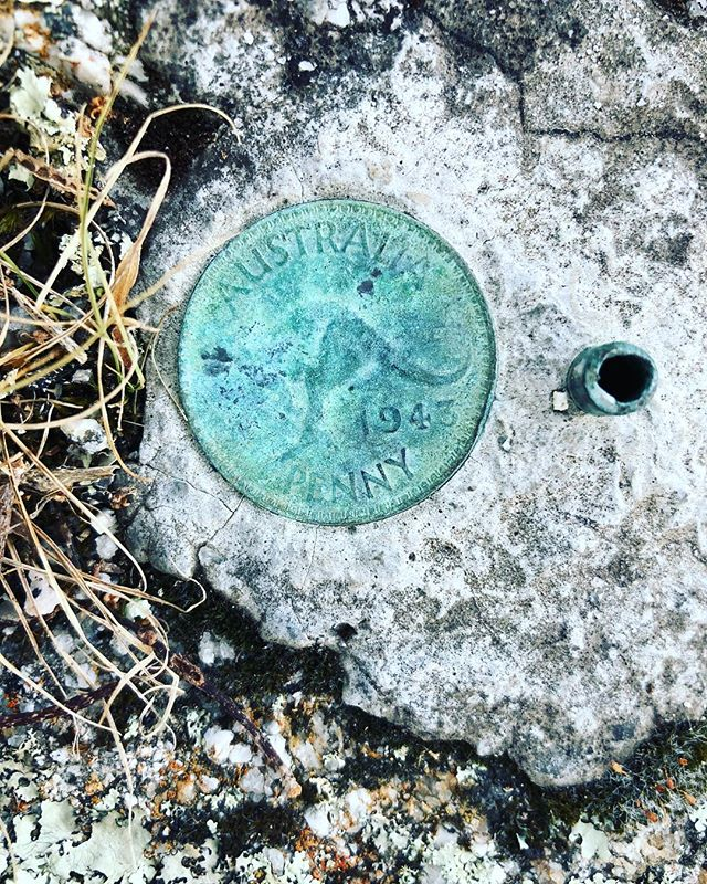 Secret Penny on Three Hummock Island! Anyone seen it?? 😏 Mystery date solved! It looks like 1943 to us! . #hiddentreasures #australianpenny #threehummockisland #tasmania #cradlecoast