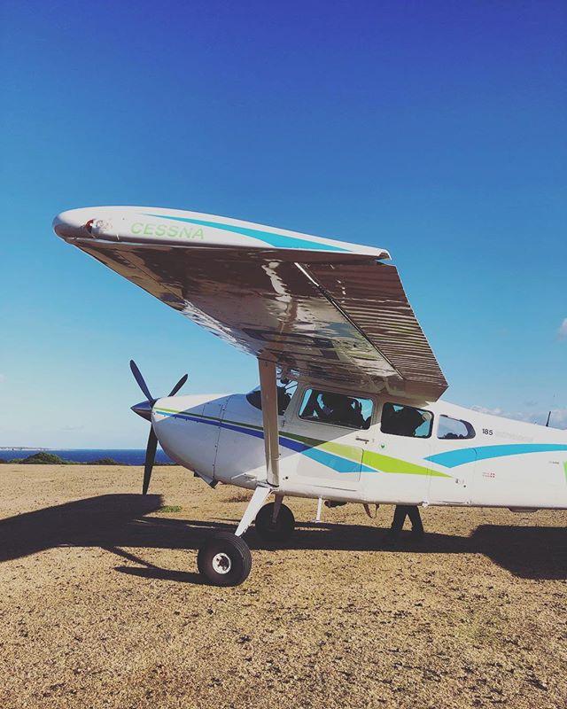 Not a bad way to start an adventure! 😎🛩👌 . #privatecharter #threehummockisland #seairadventurecharters #adventuretasmania #cradlecoast #tasmaniasnorthwest #discovertasmania #secretisland #remoteisland #escapetoanisland