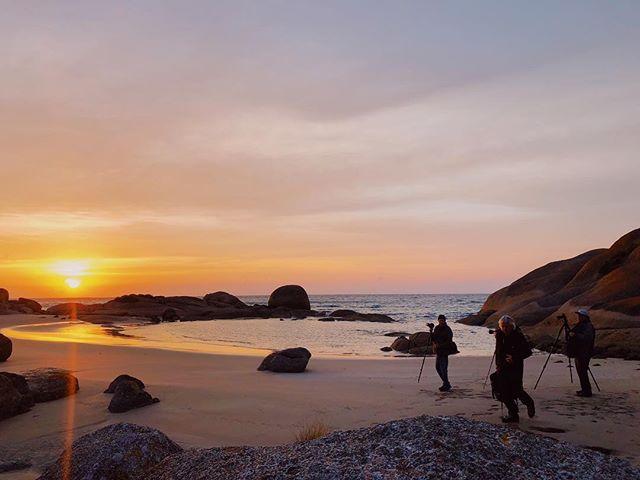 Photographer's paradise #threehummockisland . @photoesc_aus . . . . #discovertasmania #tasmania #tasmaniagram #islandsofadventure #adventuretasmania #cradlecoast #cradlecoasttasmania #tasmaniasnorthwest