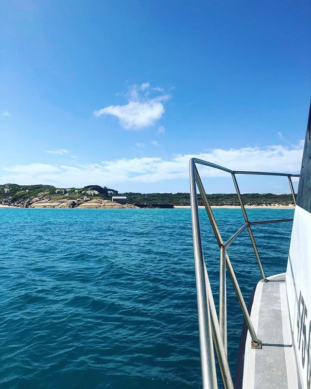 On approach to #threehummockisland with Northwest Boat Charters. Just another great way to reach this very special island! 🛥😃👌 . . . . #tasmania #discovertasmania #cradlecoast #cradlecoasttasmania #visitcradlecoast #cradletocoast #bassstrait #secretisland #islandsofadventure #remoteisland #islandparadise #tasmaniasnorthwest #northwesttasmania