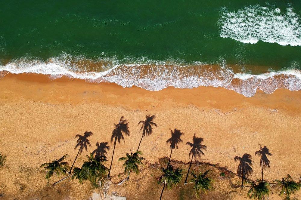 beach-bird-s-eye-view-high-961113.jpg