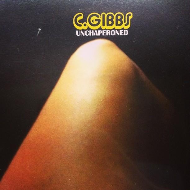 00-C.-Gibbs-Unchaperoned.jpg