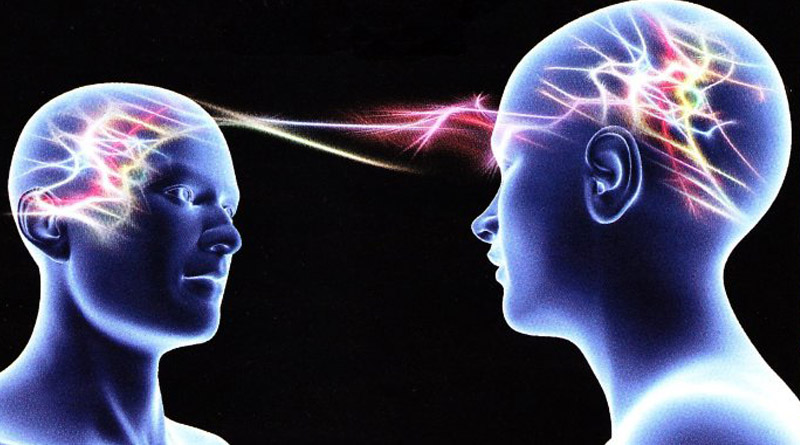 cerveau-empathie-ressources-plurielles.jpg
