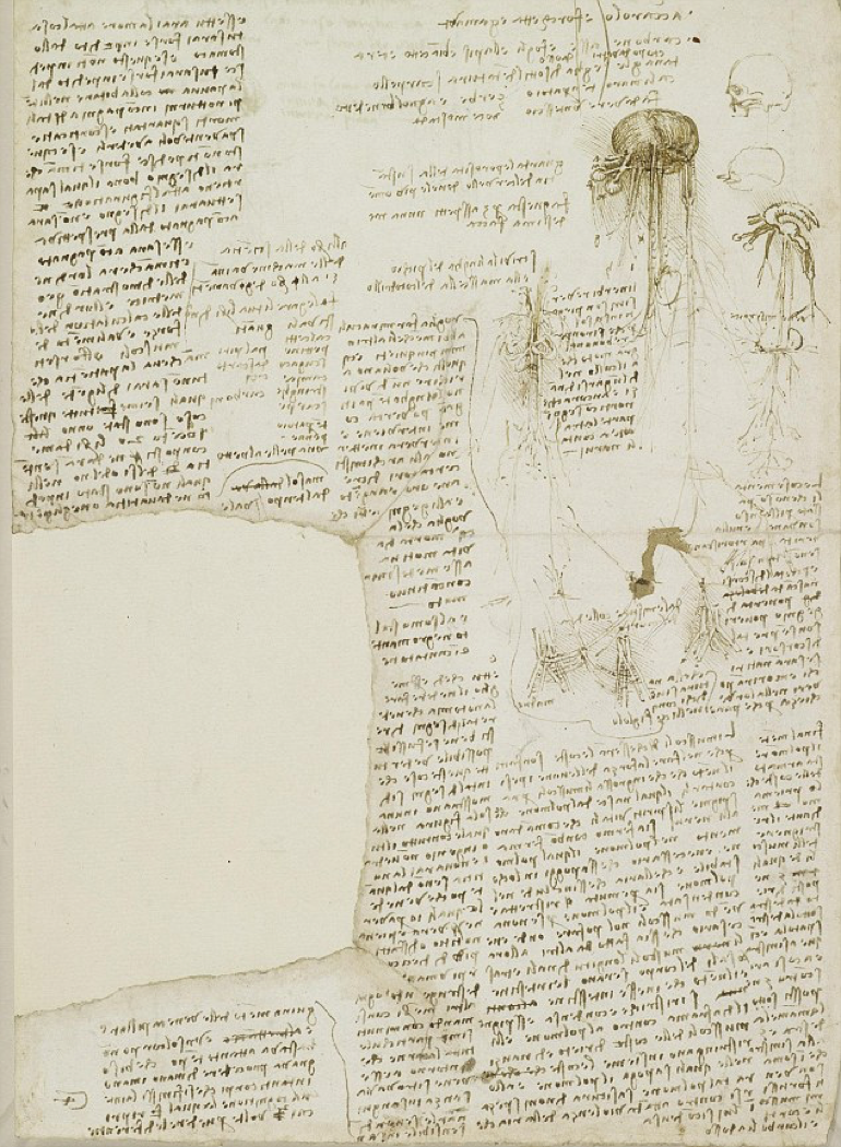An extract from one of Leonardo da Vinci's journals