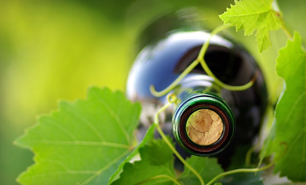 Join Dirt Road Wine Club - Explore with us