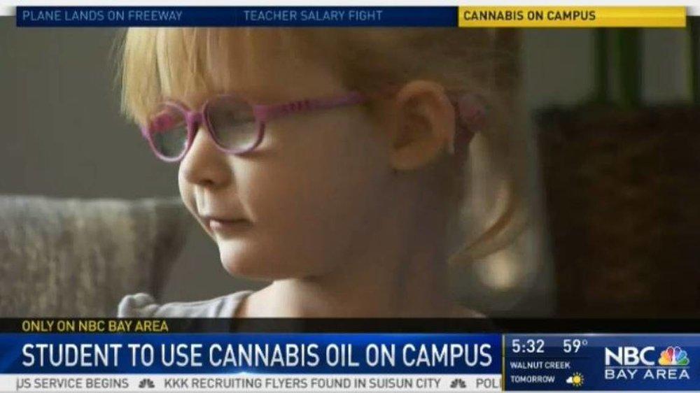 Cannabis on Campus.JPG