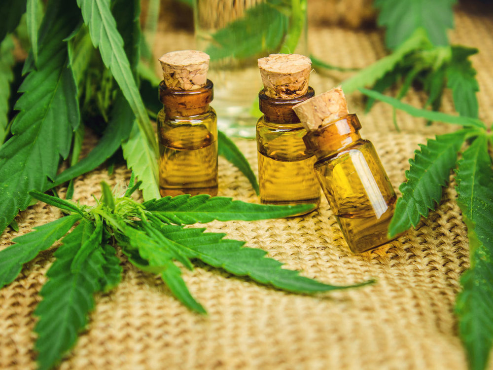 Senate Bill would allow k12 students to bring cannabis to school.jpg