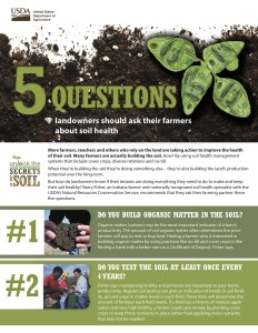 5Questions-NOLO-Factsheet-15