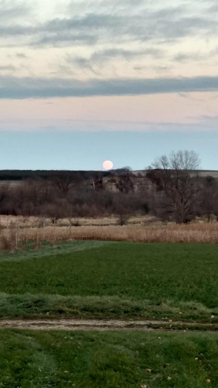 Supermoon over Autumn Moon Farm.